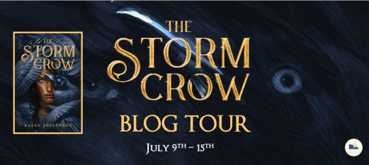 the storm crow banner.png